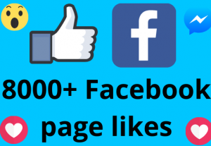I will add 8000+ REAL AND non drop Facebook Page likes