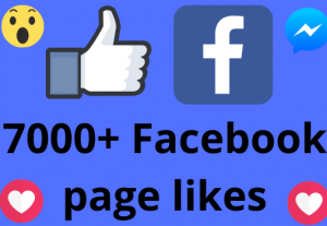 I will add 7000+ REAL AND non drop Facebook Page likes
