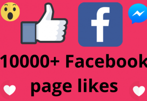 I will add 10000+ REAL AND non drop Facebook Page likes