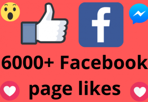 I will add 6000+ REAL AND non drop Facebook Page likes