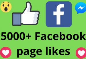 I will add 5000+ REAL AND non drop Facebook Page likes