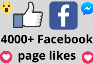 I will add 4000+ REAL AND non drop Facebook Page likes