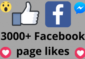 I will add 3000+ REAL AND non drop Facebook Page likes