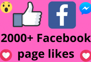 I will add 2000+ REAL AND non drop Facebook Page likes