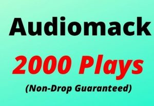 Provide 2000 Audiomack Plays Non-drop Lifetime Guaranteed.