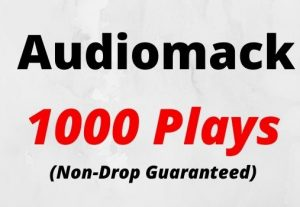 Provide 1000 Audiomack Plays Non-drop Lifetime Guaranteed.