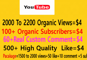 Non Drop Lifetime Guaranteed YouTube video Promotion with Perfect Combination Strategy Campaign