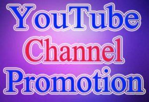 I Will Provide Your 2000+ YouTube Subscriber Non Drop