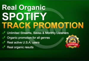 I will do increase spotify promotion streams and monthly listeners