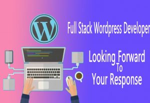 Full Stack Web Developer || WordPress Expert || Elementor