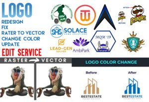 I will redesign, vectorize, update, edit, fix and trace your logo