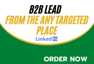 I will collect your 25 targeted business leads on linkedin