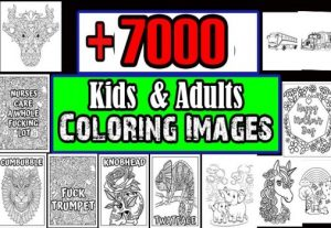 I will provide 7000 kids and adults coloring images jpeg png format sell on KDP