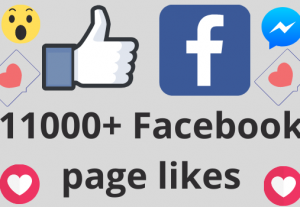 I will add 11000+ REAL AND non drop Facebook Page likes