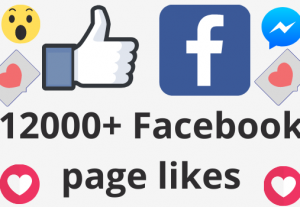 I will add 12000+ REAL AND non drop Facebook Page likes