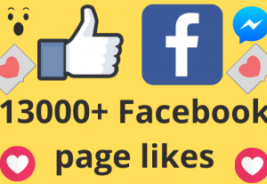 I will add 13000+ REAL AND non drop Facebook Page likes