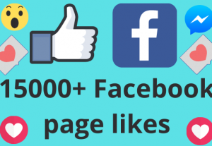I will add 15000+ REAL AND non drop Facebook Page likes
