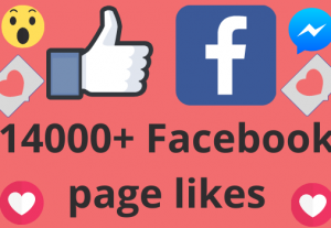 I will add 14000+ REAL AND non drop Facebook Page likes