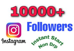 I will add 10000+ Followers on your Instagram Profile. Non Drop!!