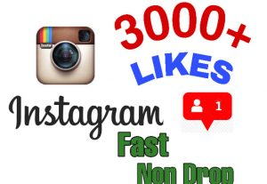 I will add 3000+ Likes on Instagram !! Instant delivery and Non Drop!