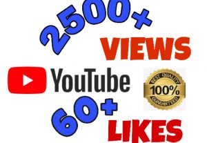I will add 2500+ VIEWS and 60+ LIKES on youtube . Non Drop & Fast delivery.