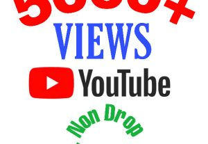 I will add 5000+ Views on Youtube video !! Non drop and High Quality !
