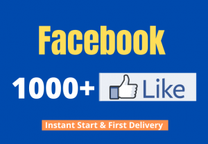 I will add you 1000+ Facebook Non Drop Page Likes
