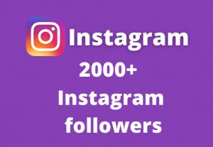 I will add 2000+ Instagram followers || Real and Active Users || Non Drop Guarantee.
