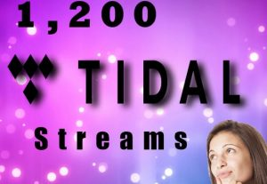 I will Deliver 1,200 Tidal Plays To Your Track.