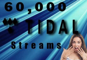 I will Deliver 60,000 Tidal Plays To Your Track.