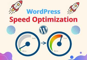 I will do speed up and optimize your WordPress website