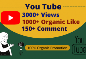 You will get 3000+Views,1000+Likes & 100+ Comment by you tube promotion