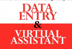 I will provide excellent data entry VA and web research services