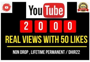 I will provide 2000 you tube views with 50 likes Instant
