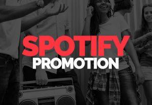 I Will Add 5000-6000 Spotify Streams Lifetime Non Drops