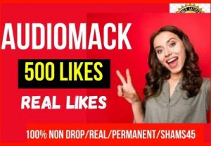 Get Instant 500+ Audiomack likes, Non-Drop, real Human Likes, and Permanent
