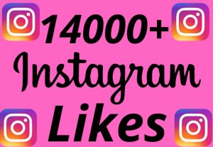 I will add 14000+ REAL AND non drop Instagram likes