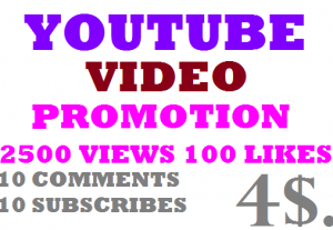 2500 High Retention Lifetime Guaranty Youtube Video Views 100 likes10 subscribes 10 comments