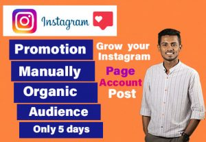I will promote and grow your instagram account and page organically 250 followers only 5$
