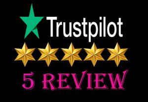 I will give you (5) real and permanent TP Reviews