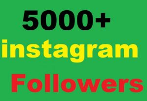 5000+ Instagram Followers Or 5000+ Instagram Post Photo  Likes
