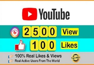 I will provide you 2500 YouTube Video Views & 100 like || Real and Active Users || Non-drop and Lifetime Guarantee..