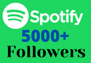 I will provide you 5000+ H.Q Spotify real follower