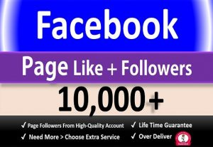 Get 10,000+ Facebook Fan Page Likes + Followers, Permanent Active user Guaranteed.