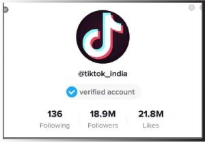 I will be grow your tiktok to 2m fans organically