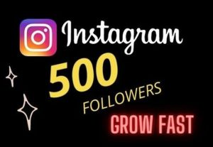 Get 500 Instagram Followers | Non-Drop | Fast Delivery