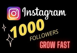 Get 1000 Instagram Followers | Non-Drop | Fast Delivery