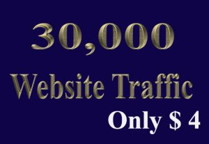 30,000+ keyword targeted traffic from google