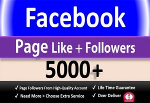 Get 5000+ Facebook Fan Page Likes + Followers, Permanent Active user Guaranteed.