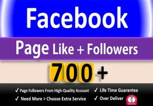 Get 700+ Facebook Fan Page Likes + Followers, Permanent Active user Guaranteed.